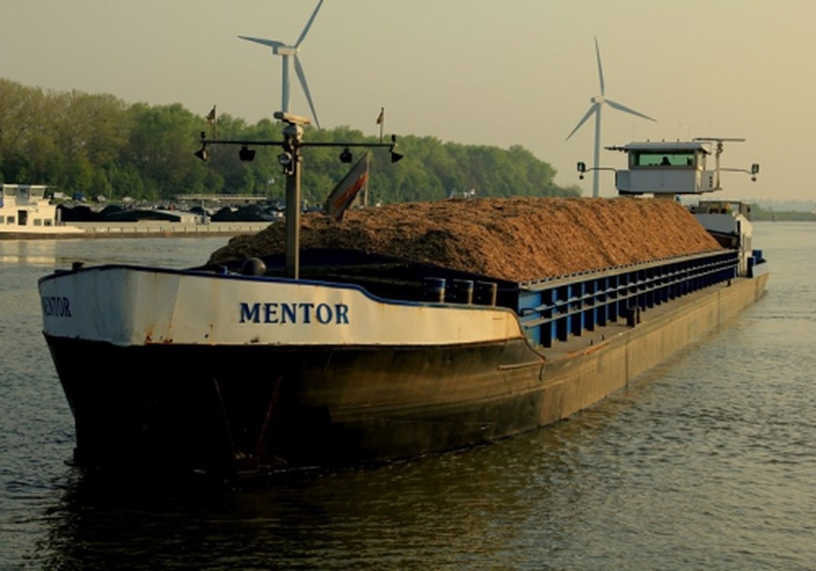 Mentor Concordia Group